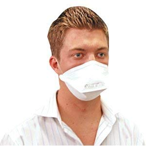 Respirator P2 Particulate Mask Face Surgical N95 Livingstone