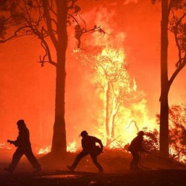 NSW firefighters crowdfunding upgraded face masks amid claims RFS gear insufficient